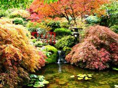 Japanese Garden- Butchart Gardens Victoria, BC.