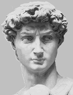 2. i like how Michelangelo draw David's facial features. The statue shows Michelangelo's anger, distrust, and annoyance. He managed to do this through years of hard work and also because sculpturing is something he enjoys.  3. i would start looking in subjects that interest me or one of my hobbies.