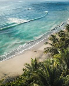 Dreams are made of sand and sun Montezuma Costa Ricavia @nat_al_ie #CostaRicaExperts#CostaRica#puravida#travelcostarica#crfanphotos#costaricaphoto#costaricagram#costaricapuravida Montezuma, Costa Rica Travel, Vacation Trips, Tropical, Beach, Water, Outdoor, Dreams, Sun