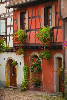 Half Timbered cottage in Alsace, France