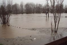 North Island flooding