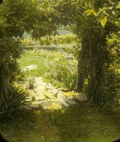 Glass Lantern Slide, 1930 via Gardens Dream Garden, Garden Path, Garden Inspiration, Story Inspiration, Jungle Gardens, Garden Borders, Secret Places, My Secret Garden, Nature Crafts
