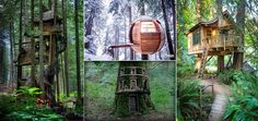 <p>Almost every little child has a dream of living in a tree house. While some of us may have fulfilled this desire, there are plenty of us who still crave for this dream. Tree houses are very different from any other thing in the world since it creates a memorable …</p>