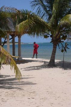 The Majlis Resort has emerged as one of the most intimate & luxurious beach hotels of Kenya.