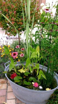 Container Pond, Container Water Gardens, Container Houses, Patio Pond, Ponds Backyard, Garden Pond, Garden Landscaping, Tropical Landscaping, Rooftop Garden