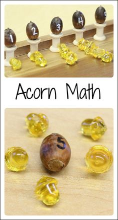 Fall math activities with acorns! A variety of hands-on learning using numbered acorns.