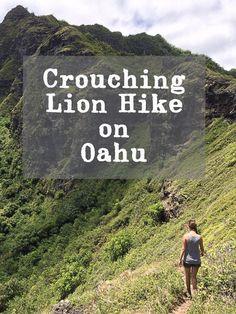 Crouching-Lion-Oahu-(28-of-30)