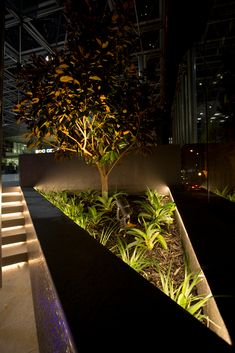 Emerald Spike Spotlight: Easy to Move, for Planter Boxes to Trees - Unios Facade Lighting, Plant Lighting, Tree Lighting, Outdoor Lighting, Architectural Lighting Design, Landscape Lighting Design, Arch Light, Garden Planter Boxes, External Lighting