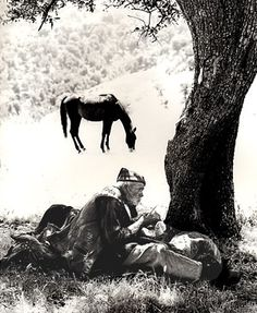 Sardegna. Pastore sul Gennargentu, 1955 Photographer Fulvio Roiter