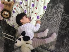 Lost at on 08 Jun. 2016 by Dilara: Lost last night around daughters favourite toy jellycat dog black and white All Is Lost, Jellycat, Lost & Found, Pet Toys, Nursery Ideas, Jun, Daughters, Teddy Bear, London