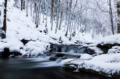Winter stream by Mateusz Kuca on 500px
