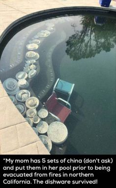 Funny - My mom has 5 sets of china (don't ask) and put them in her pool prior to being evacuated from fires in northern California The dishware survived! Funny Memes, Hilarious, Jokes, Mum Memes, Funny Laugh, Stupid Funny, Weird Facts, Fun Facts, Morning Humor