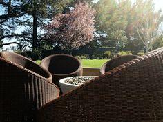Garden design project// Modern Landscape design// Gari Camaisa// All rights reserved