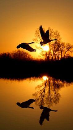 Coucher de soleil sur le fleuve st laurent quebec