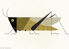 'Grasshopper' (2012) by Japanese illustrator Ryo Takemasa (b.1981). via the artist on Flickr