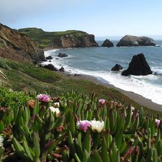 Lived in Mendocino County ( Fort Bragg) for almost 4 years.. boy do I miss the coast..