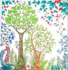 Johanna Basford Secret garden colored with koh-i-noor polycolor