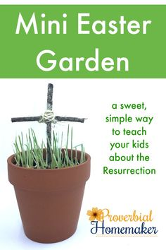Such a fun twist on this idea! Teach your kids about the resurrection story with a mini Easter garden!