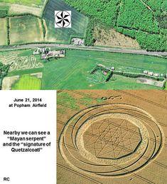 Crop Circle at Black Wood, Nr Popham, Hampshire, united Kingdom. Report 21st June 2014