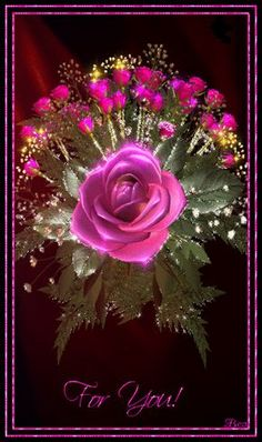 The perfect Pink Flowers Roses Animated GIF for your conversation. Discover and Share the best GIFs on Tenor. Flowers Gif, Beautiful Rose Flowers, Flowers For You, My Flower, Beautiful Flowers, Beautiful Love Pictures, Beautiful Gif, Beau Gif, Rosa Rose