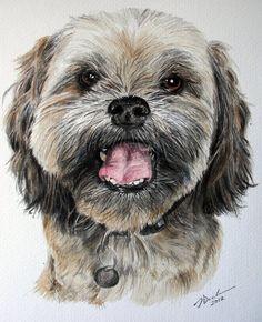 watercolor dog painting   Lhasa Apso dog watercolour by JudyDickinson