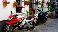 Moto GP. Jerez. (Spain). #españa #spain���� #spanien #andalucia #viajar #travel #trip #traveltheworld #holidays #relax #travelling #instaphoto #viajes #photographer #photo #photooftheday #photography #picoftheday #foto #fotografia #chipiona #naturephotography #motogp2017 #motogp #cadiz #motos #jerez2017 #jerez http://tipsrazzi.com/ipost/1508899548867629658/?code=BTwsCUsAJJa