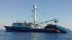 OMC revierte triunfo de México en disputa por atún con Estados Unidos - Forbes Mexico