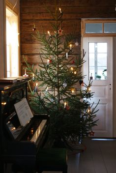 SEASONAL – CHRISTMAS – an old fashioned christmas tree for a rustic style holiday.