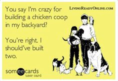 Carolina Coops offers the country's best selection of superior-grade chicken coops and accessories for sale. All chicken coops are handcrafted with premium materials and are prefabricated or custom designed and built to your own specifications. Chicken Life, Chicken Humor, Chicken Art, Chicken Eggs, Chicken Coops, Funny Chicken, Chicken Feed, Chicken Houses, Raising Backyard Chickens
