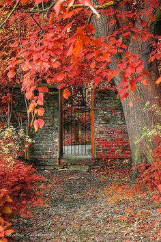 Fall (North Yorkshire, England)