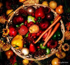 Happy Thanksgiving: find ways to cope with common holiday stressors.