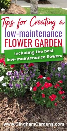 Would you love to have a flower garden, but don't have the time to care for one? Need to add some curb appeal to your home? Learn how to Create and Maintain a Low Maintenance Flower Garden, includes a list of the best low maintenance flowers. #flowergardenideas #lowmaintenanceperennials