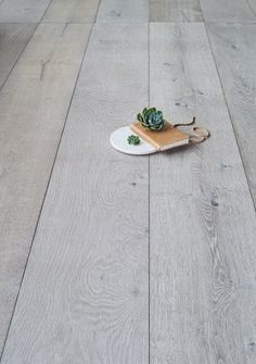 Ash Grey is a worn looking European Oak Timber Flooring