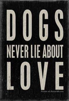 #Dog #Love