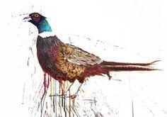 Pheasant, Paintings, Bird, The Originals, Prints, Animals, Animales, Paint, Animaux