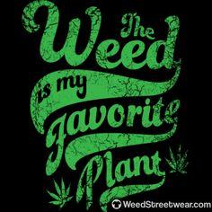 #marijuana #hippie #highlife #cannabis #thc #weedstagram #cannabiscommunity #dabs #hightimes #highsociety #ganja #dank #stoner #weed #kush