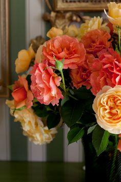 Roses | Carolyne Roehm
