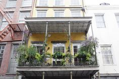 Love New Orleans homes