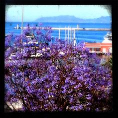 Everywhere is #Blue overlooking out #cadelsol 's windows :)