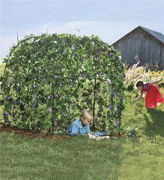 Main image for GardenFort%26#153; Backyard Play Space