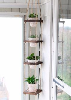 jardin-vertical-colgante-unico-diseno-independiente-378111-MLA20497428170_112015-F.jpg (736×1040)
