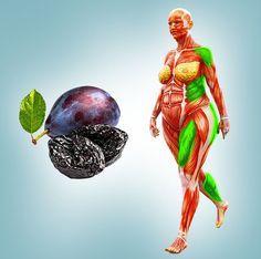 Toto sušené ovoce dokáže udělat zázraky pro vaše trávení či krevní tlak Pitted Prunes, Dried Prunes, Dried Apples, Dried Fruit, Sources Of Vitamin B, Sources Of Iron, Obese Women, Senior Fitness, Bone Health
