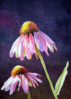 painting of coneflowers for the backyard project