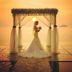 Love is in the air at Conrad Koh Samui. A stunning bride poses for a photo as the sun sets over the Gulf of Thailand. Wedding Places, Wedding Venues, Wedding Ideas, Thailand Wedding, Bride Poses, Santorini Wedding, Koh Samui, Luxury Wedding, Perfect Wedding