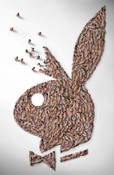 The Playboy bunny logo (made of 200 naked models)   The Playboy bunny logo (made of 200 naked models)
