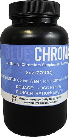 Daily Dose Equine offers a variety of Non-GMO supplements to aid digestion, lower blood sugar and more in horses. Regulate Blood Sugar, Lower Blood Sugar, Pet Store, Metabolism, Chrome, Bottle, Blue, Products, Flask