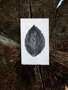The Intricate Leaf