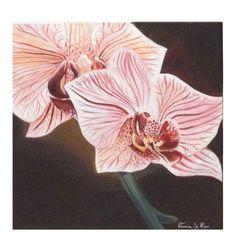 """Consultate il mio progetto @Behance: """"Orchids""""…"""