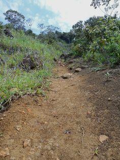 https://flic.kr/s/aHskvTg1JV | Colombia, Farallones de Cali, Pico del Águila
