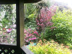 view from the gazebo Gazebo, Plants, Kiosk, Planters, Cabana, Plant, Planting